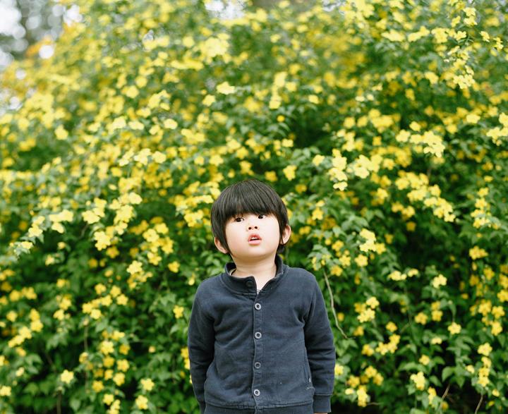 道端の花々は放っておいても勝手に育って元気に咲いているものだ。