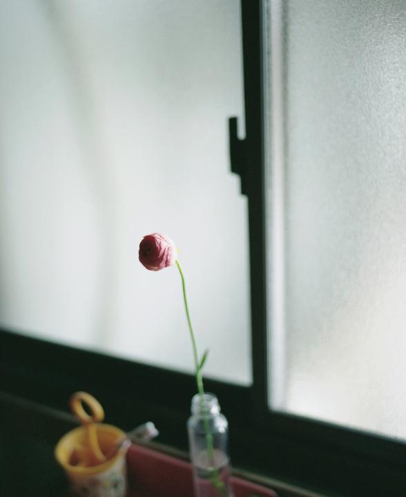花には香りがある。